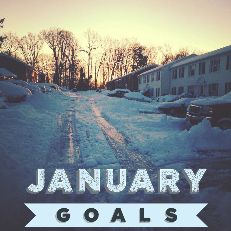 Desi Does January Goals Desi Does
